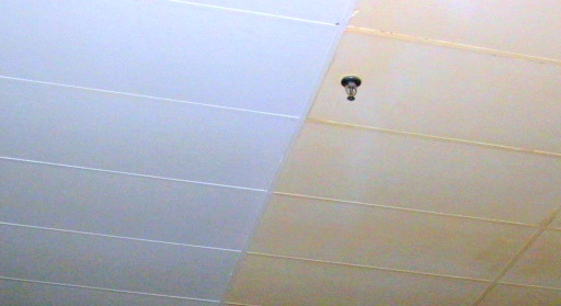 we specialize in cleaning ceilings and any overhead structure in your business!